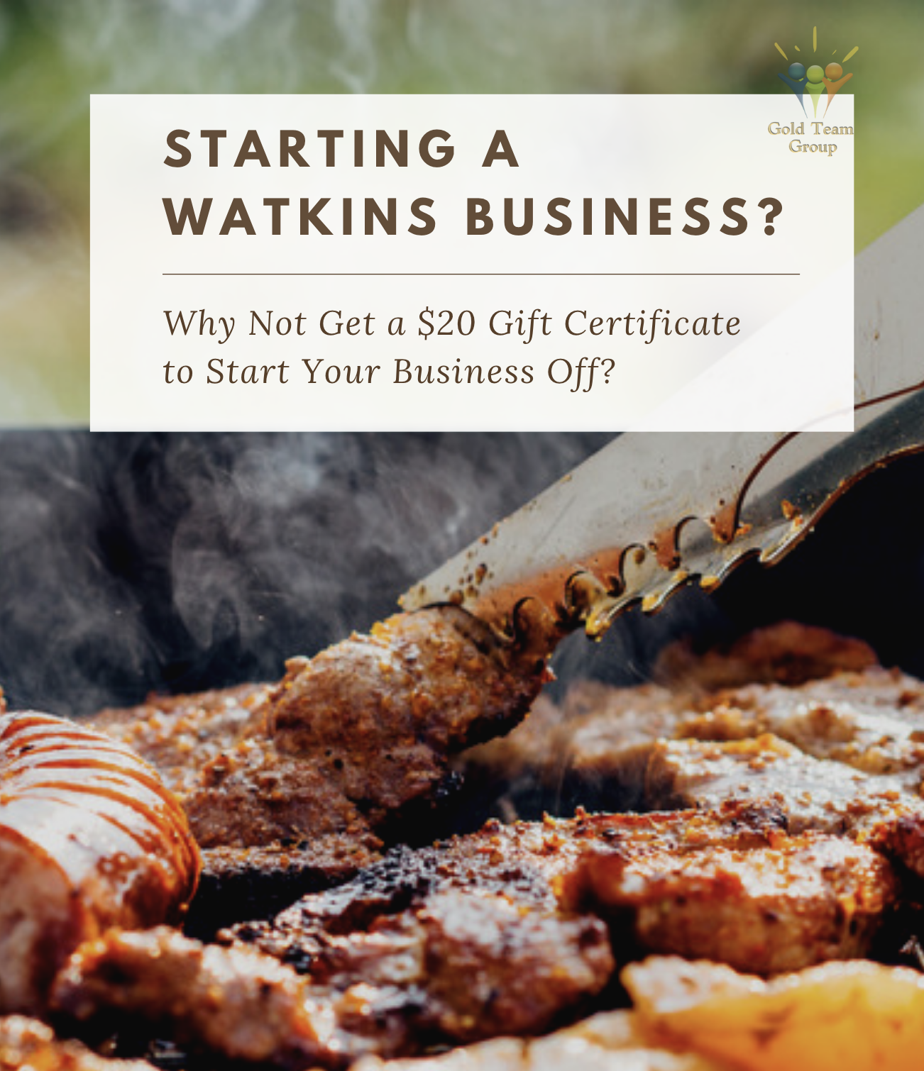 starting a watkins business